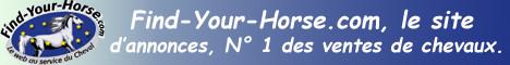 """http://www.Find-Your-Horse.com, annonces de vente et achat de chevaux, camions, vans, ..."""""""