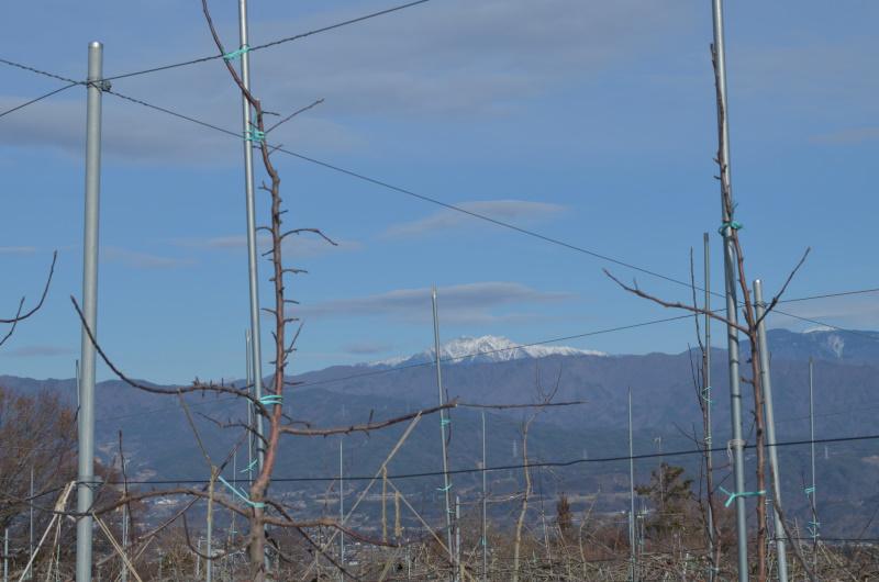 笠雲の発生が多い今年の冬