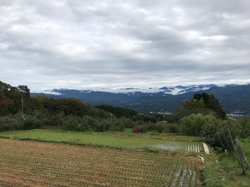 里の雨、南アルプスが初冠雪