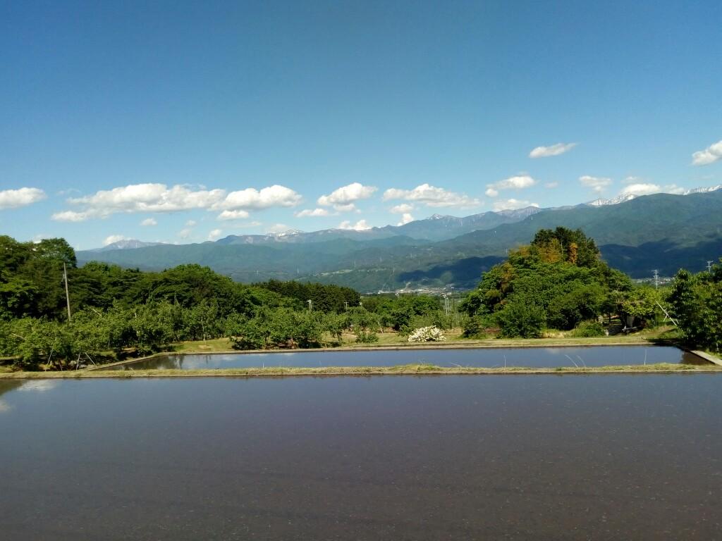 田植えを前に水が張られた水田