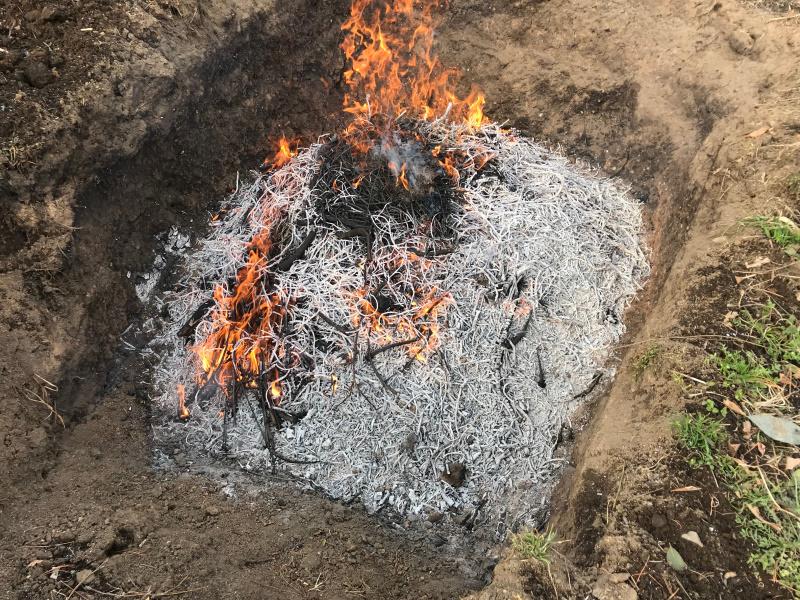 枝を投入しながら燃やし続けると白い灰の下に炭が出来ています。