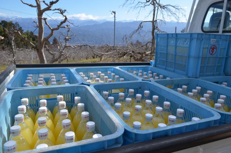 平成30年産サンふじを搾ったジュース完成