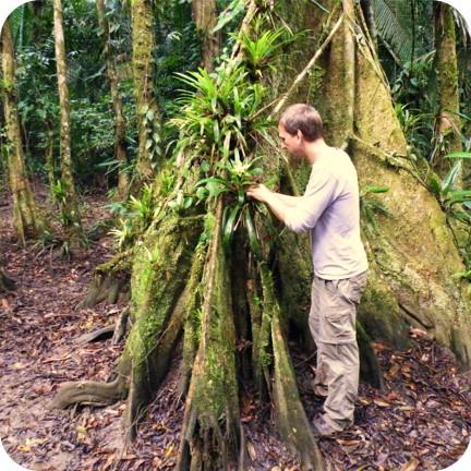 Krabbeltiere: Auf der Suche nach Anschauungsmaterial für meine Gäste (Belize 2013).