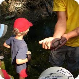 Kinderprogramm: Schlangen findet jeder cool! (Griechenland 2008).