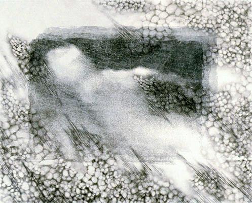 """ invisibility  #01 "" H400xW480mm 2003 第3回飛騨高山現代木版画ビエンナーレ2003入選"
