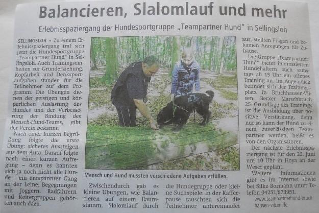 Zeitungsartikel Hunde Spaziergang