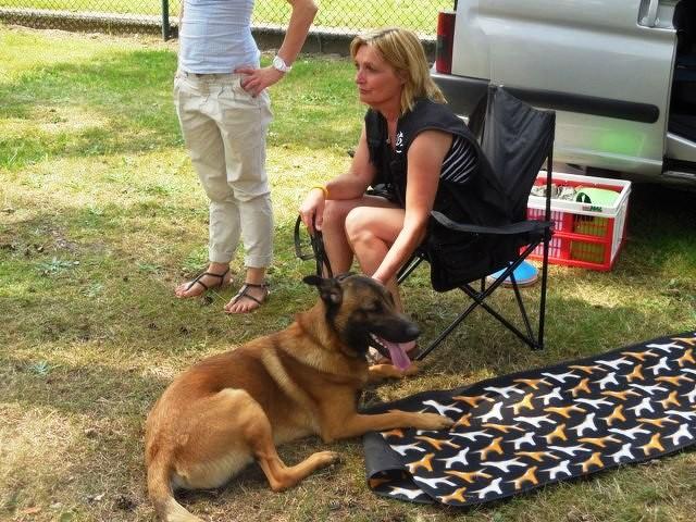 Teampartner-Hund-Hoya e.V bei FBSt Nienburg 37