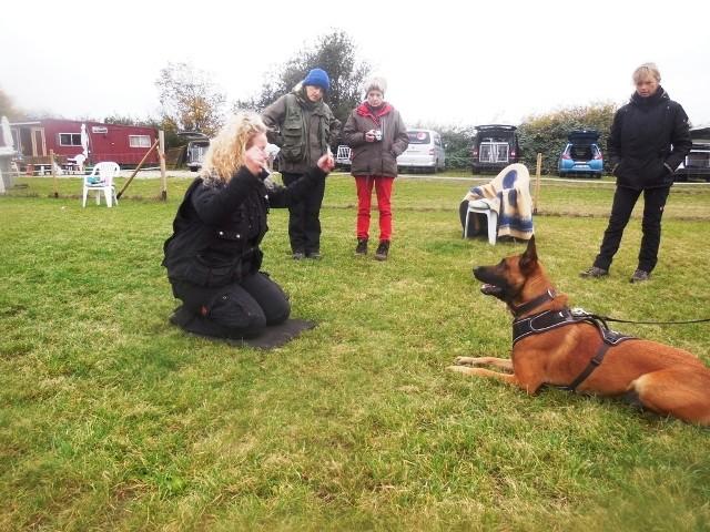 ZOS Seminar mit Hund 3