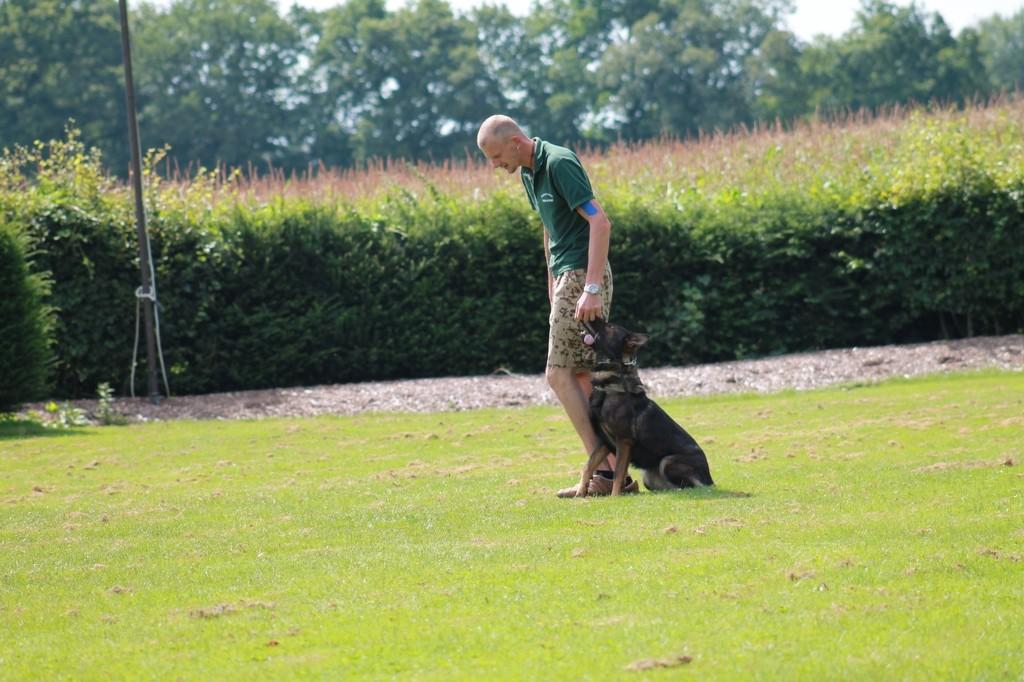 Hundetreffen 43 Teampartner-Hund-Hoya e.V.