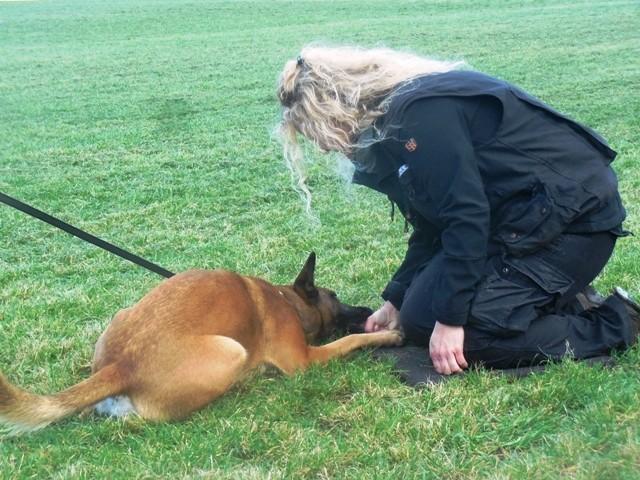 ZOS Seminar mit Hund 12
