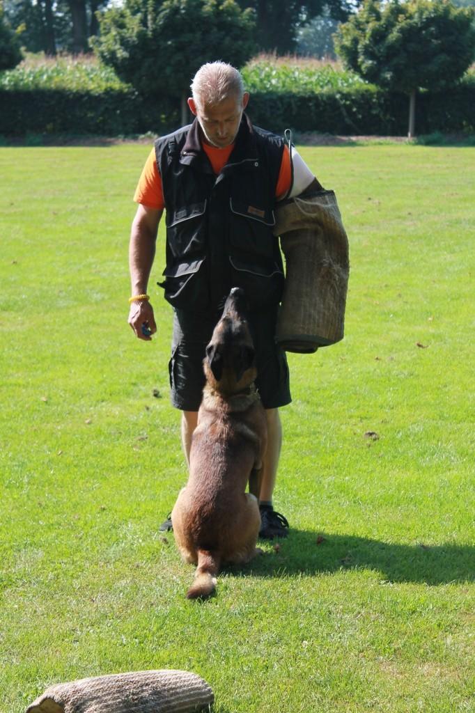 Hundetreffen 6 Teampartner-Hund-Hoya e.V.
