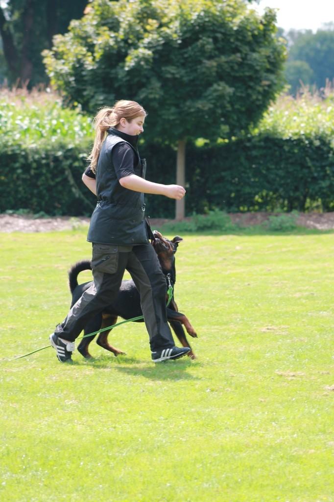 Hundetreffen 94 Teampartner-Hund-Hoya e.V.
