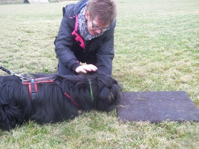 ZOS Seminar mit Hund 10