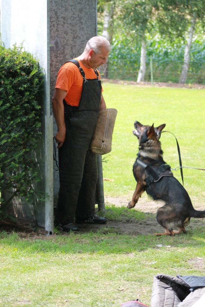Hundetreffen 98 Teampartner-Hund-Hoya e.V.