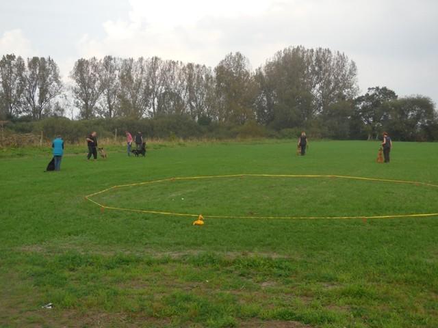 1.Training auf unserem Hundeübungsplatz in Hoya
