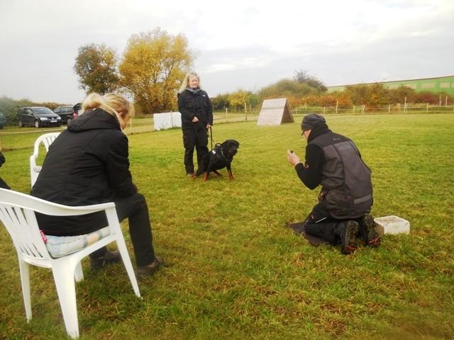 ZOS Seminar mit Hund 16