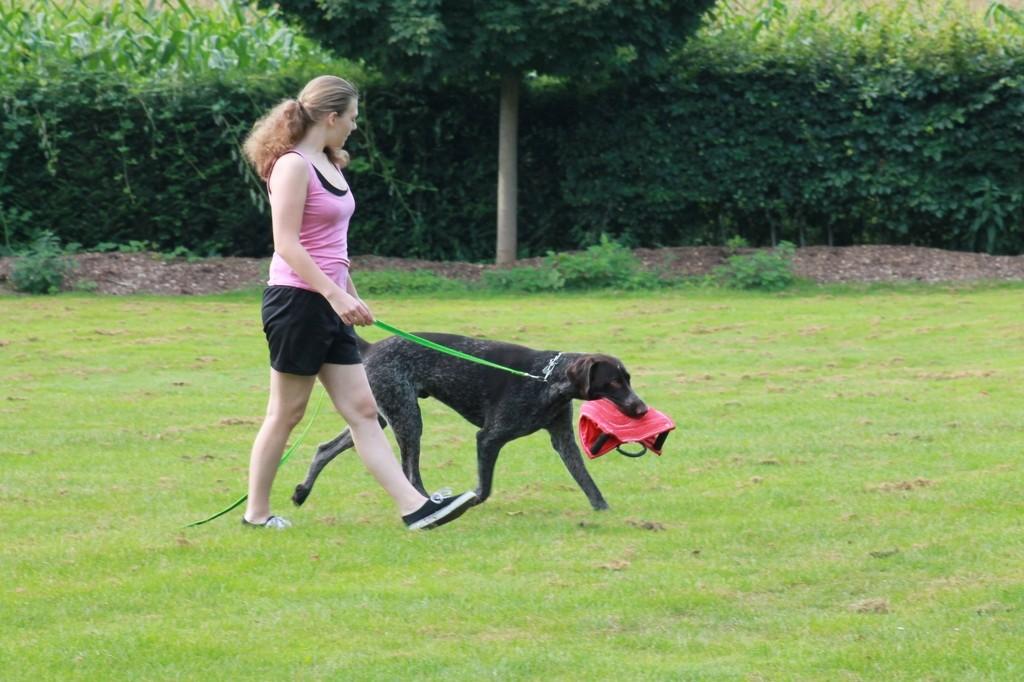Hundetreffen 1 Teampartner-Hund-Hoya e.V.