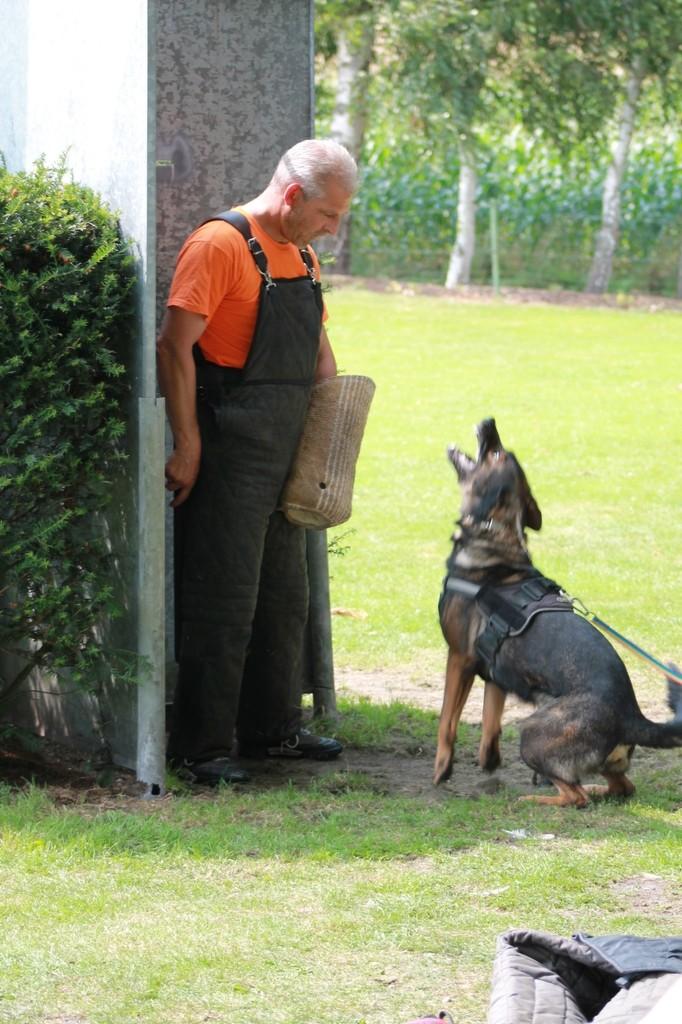 Hundetreffen 97 Teampartner-Hund-Hoya e.V.