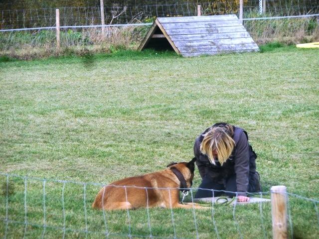 ZOS Seminar mit Hund 22