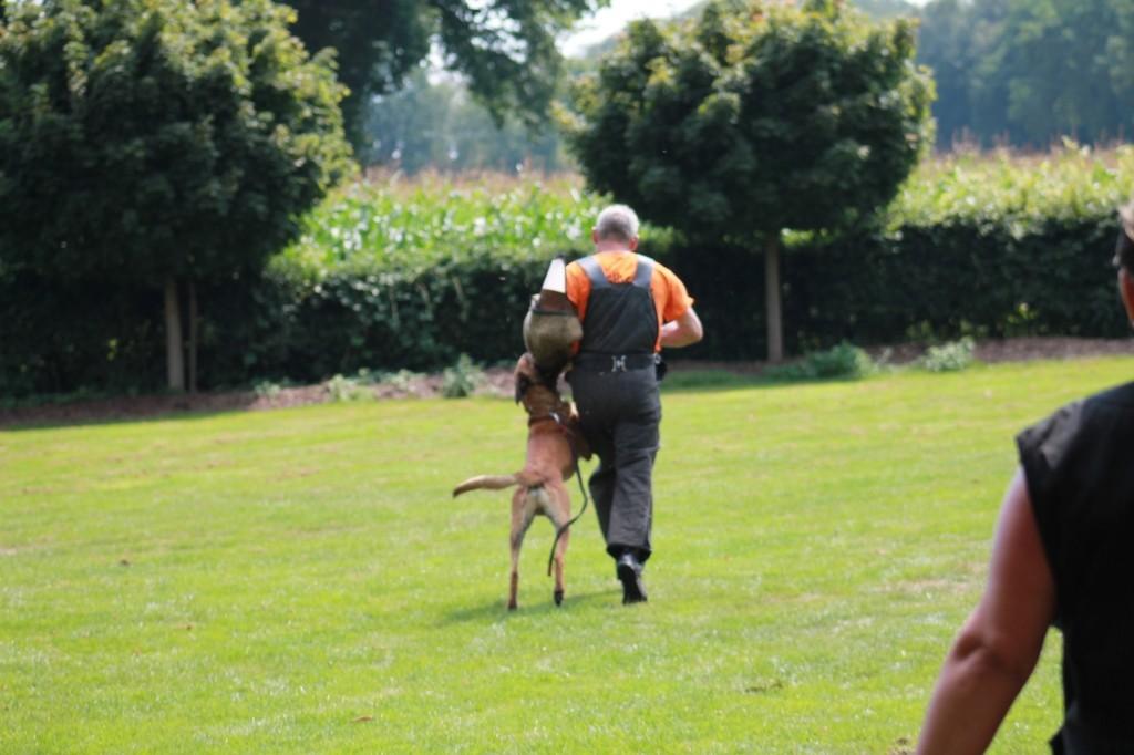 Hundetreffen 107 Teampartner-Hund-Hoya e.V.