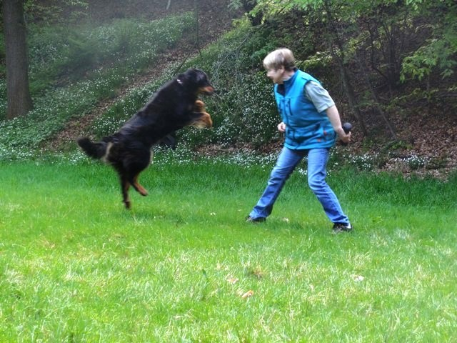Jutta beim Training Teampartner-Hund-Hoya e.V.