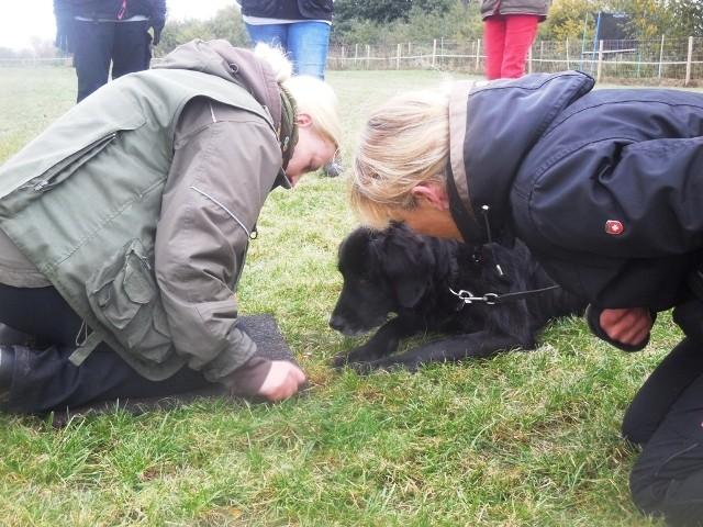 ZOS Seminar mit Hund 9