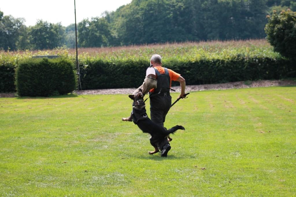 Hundetreffen 99 Teampartner-Hund-Hoya e.V.