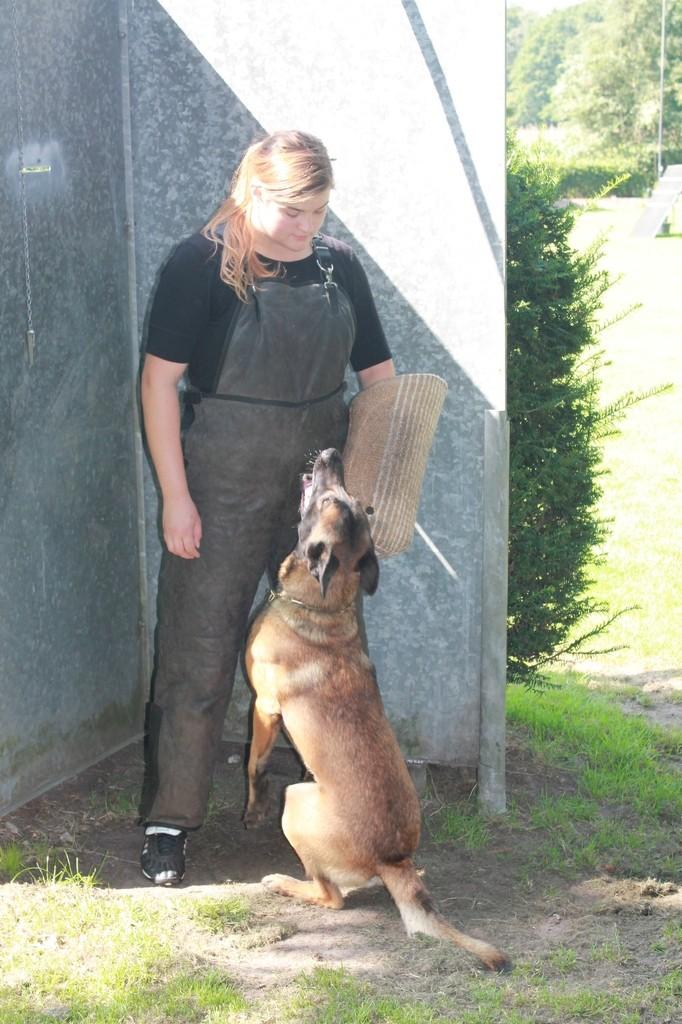 Hundetreffen 48 Teampartner-Hund-Hoya e.V.