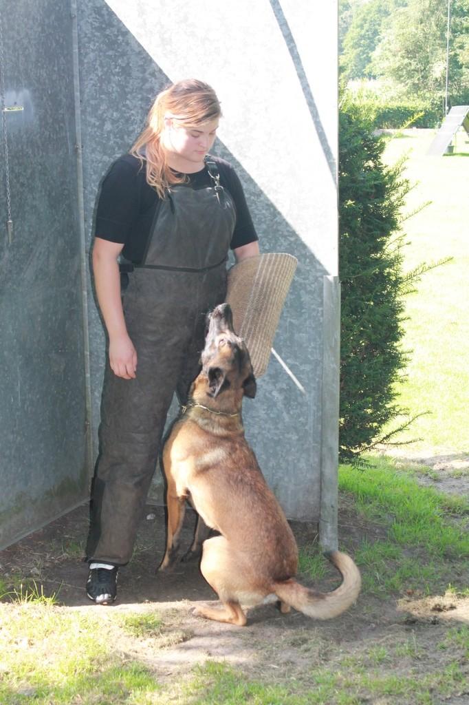 Hundetreffen 47 Teampartner-Hund-Hoya e.V.