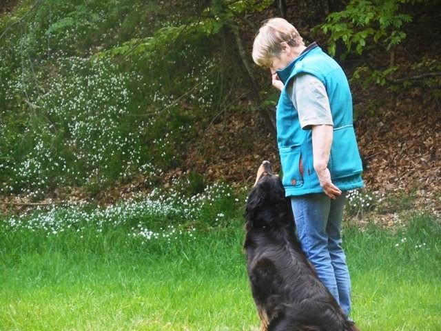 Jutta beim Training Teampartner-Hund-Hoya e.V.