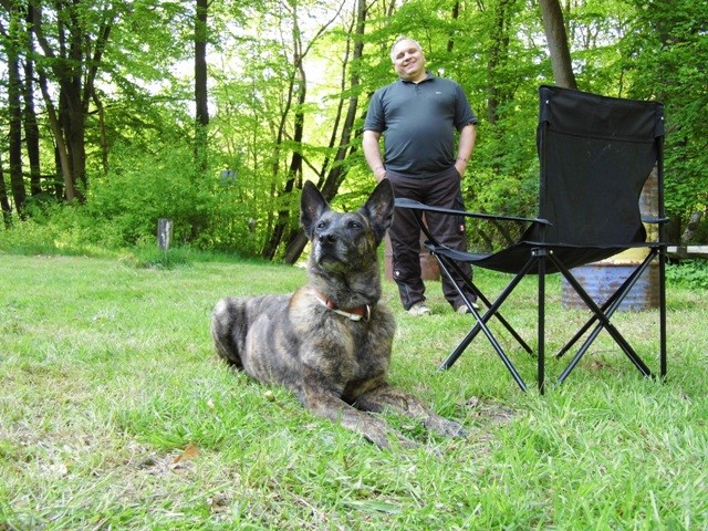 Dakota 2 Teampartner-Hund-Hoya e.V.
