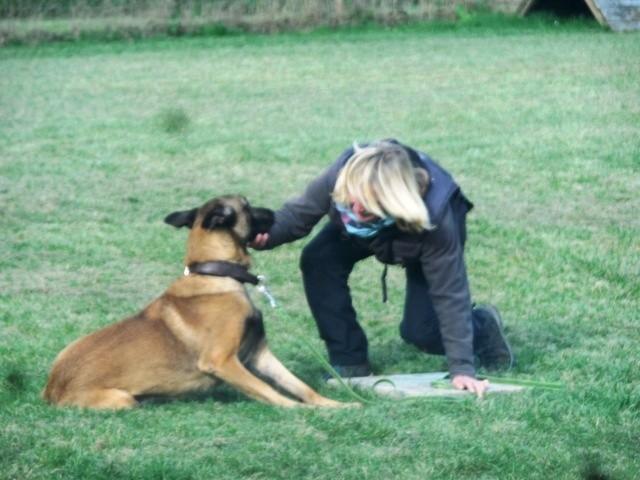ZOS Seminar mit Hund 24