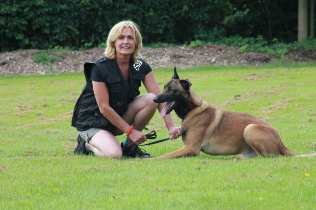 Hundetreffen 82 Teampartner-Hund-Hoya e.V.