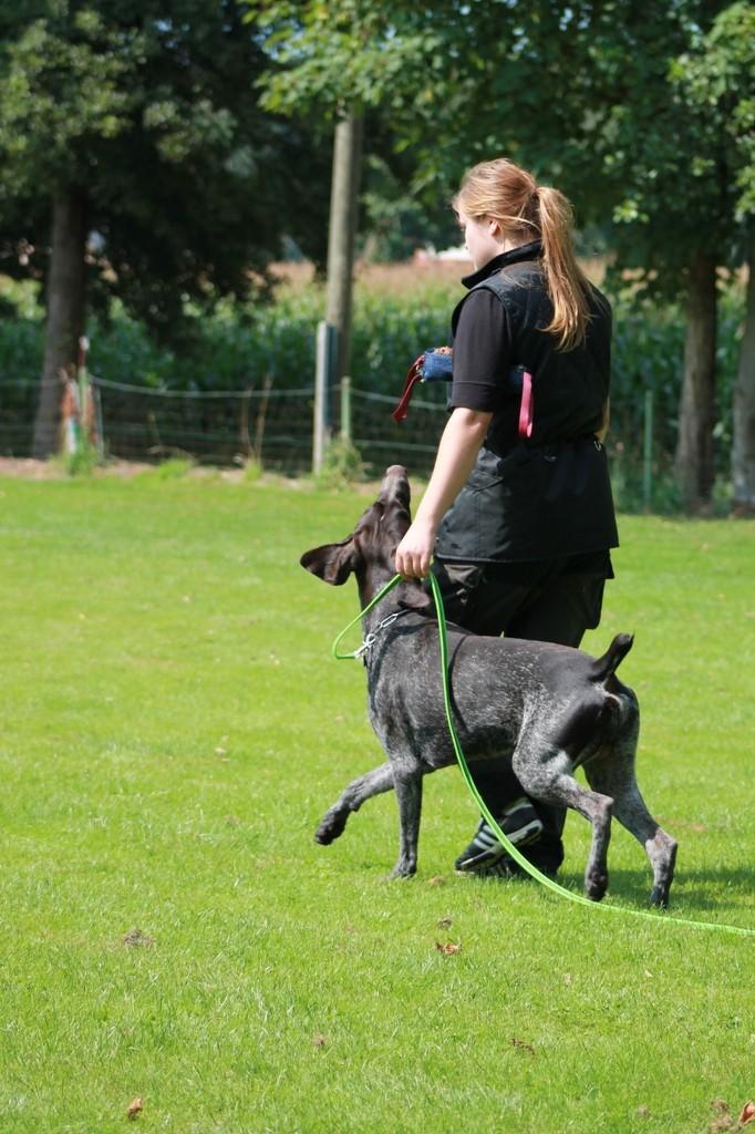 Hundetreffen 26 Teampartner-Hund-Hoya e.V.