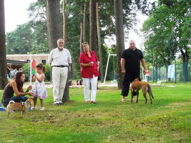 Teampartner-Hund-Hoya e.V bei FBSt Nienburg 5