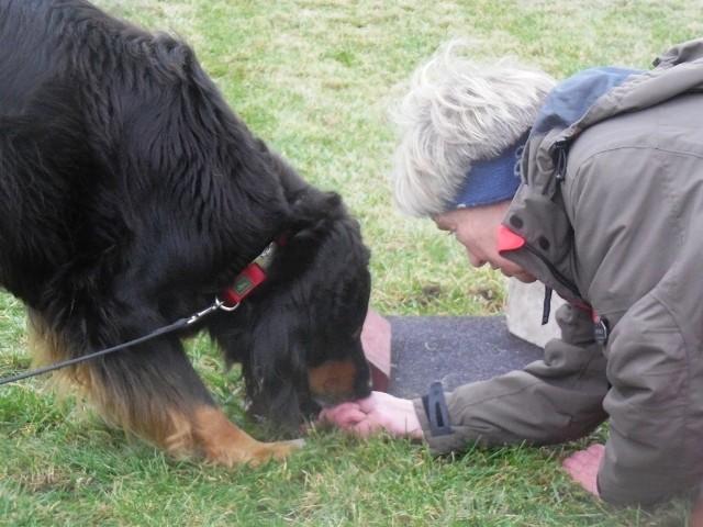 ZOS Seminar mit Hund 8