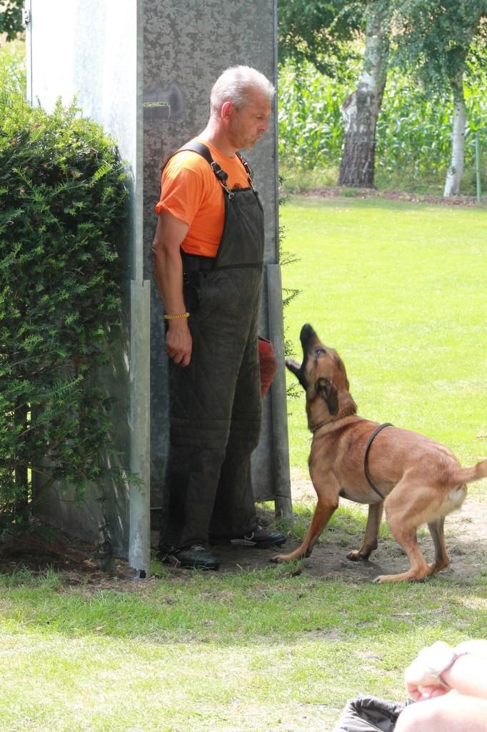 Hundetreffen 103 Teampartner-Hund-Hoya e.V.