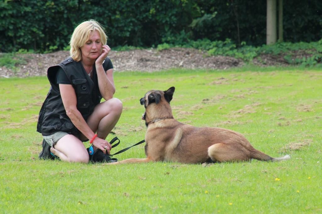 Hundetreffen 37 Teampartner-Hund-Hoya e.V.