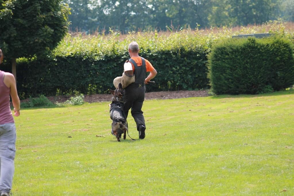 Hundetreffen 101 Teampartner-Hund-Hoya e.V.