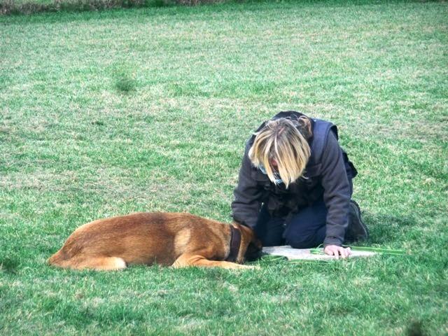ZOS Seminar mit Hund 23