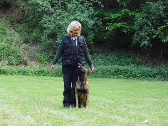 Fußarbeit Silke mit Sky Teampartner-Hund-Hoya e.V.