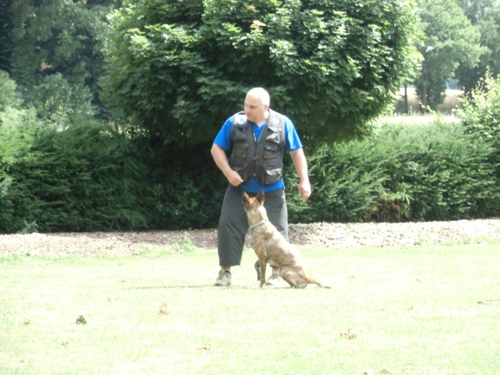 Bernd beim Training Teampartner-Hund-Hoya e.V.
