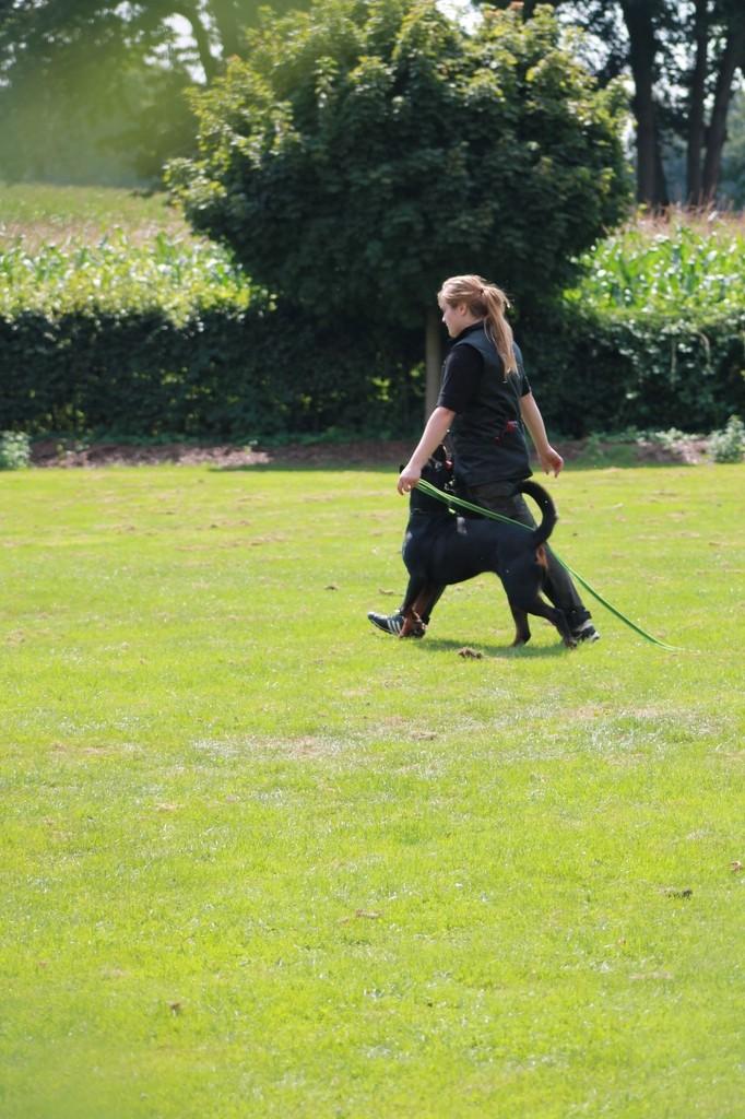 Hundetreffen 92 Teampartner-Hund-Hoya e.V.