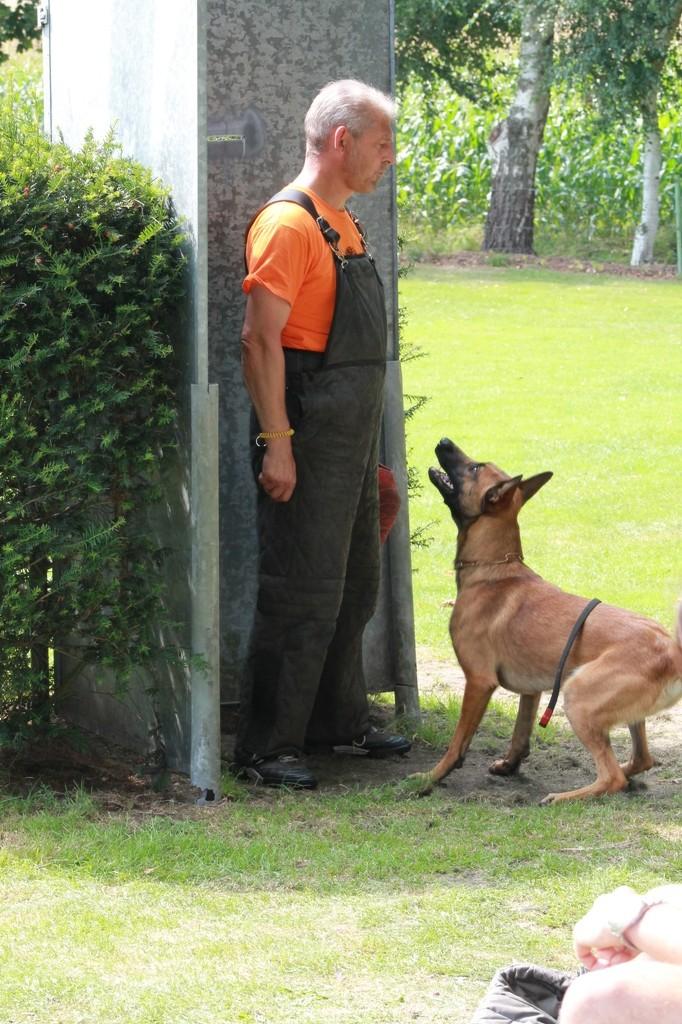 Hundetreffen 104 Teampartner-Hund-Hoya e.V.
