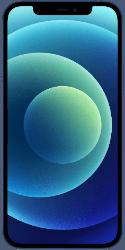 Was unterscheidet Apple iPhone 12 vom iPhone 12 Mini, 12 Pro und 12 Pro Max?