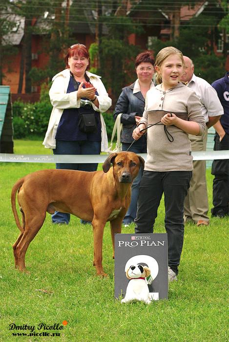 Конкурс ребенок и собака 2