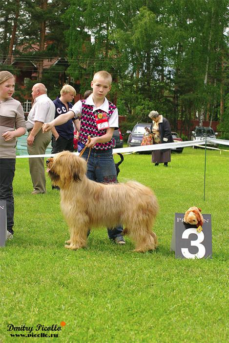 Конкурс ребенок и собака 3