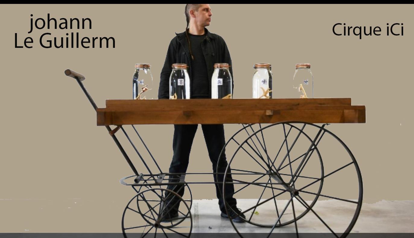 www.johannleguillerm.com