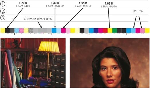 Fig. 3. Parámetros principales de impresión.