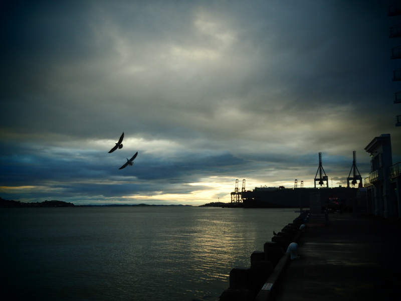 Auckland am frühen Morgen